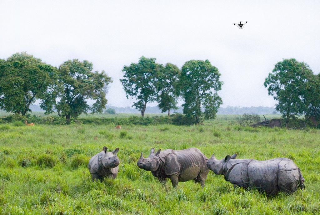 Skycatch WWF blog