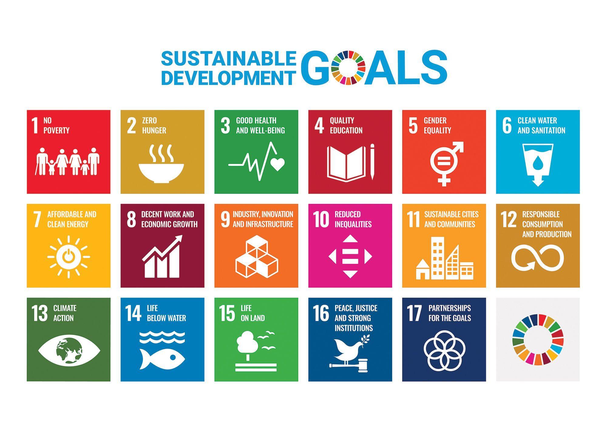 UN SDG 17 Goals